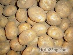 potato Urdu Meaning