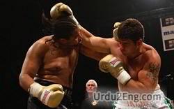 prizefighter Urdu Meaning