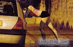 prostitute Urdu Meaning
