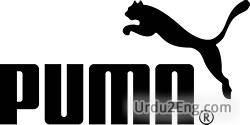 puma Urdu Meaning