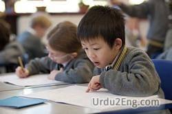 pupil Urdu Meaning