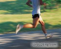 run Urdu Meaning