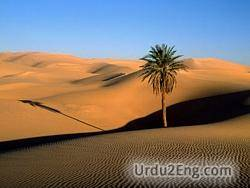 sahara Urdu Meaning