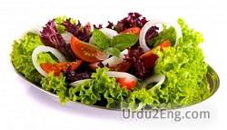 salad Urdu Meaning