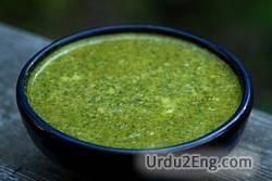 sauce Urdu Meaning
