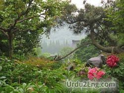 scenery Urdu Meaning
