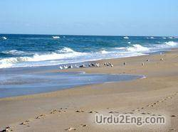seashore Urdu Meaning