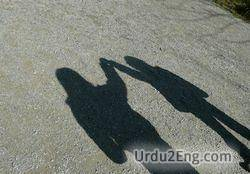 shadow Urdu Meaning