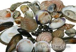 shellfish Urdu Meaning