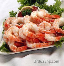 shrimp Urdu Meaning