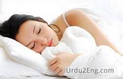 sleep Urdu Meaning
