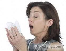 sneeze Urdu Meaning