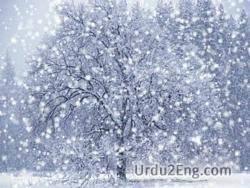 snow Urdu Meaning