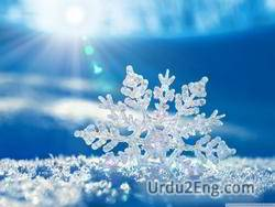 snowflake Urdu Meaning