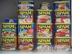 spam Urdu Meaning