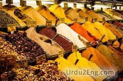 spice Urdu Meaning