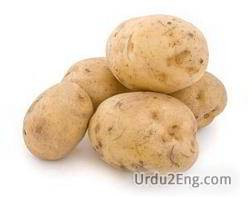 spud Urdu Meaning