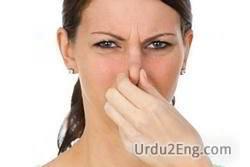 stink Urdu Meaning
