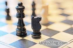 strategy Urdu Meaning