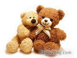 teddy Urdu Meaning
