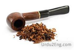 tobacco Urdu Meaning