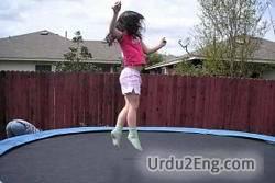 trampoline Urdu Meaning
