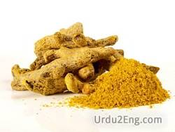 turmeric Urdu Meaning