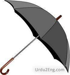 umbrella Urdu Meaning