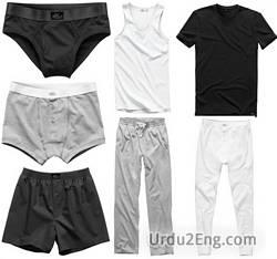 undergarment Urdu Meaning