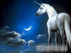 unicorn Urdu Meaning