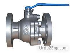 valve Urdu Meaning