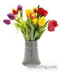 vase Urdu Meaning