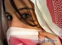veil Urdu Meaning