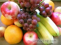 vitamin Urdu Meaning