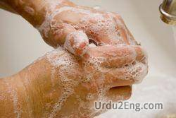 wash Urdu Meaning