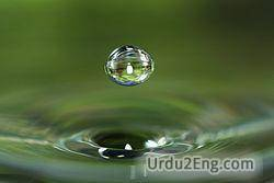 water Urdu Meaning