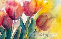 watercolor Urdu Meaning