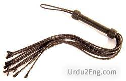 whip Urdu Meaning