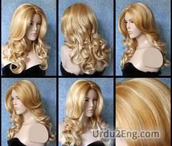 wig Urdu Meaning