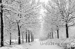 winter Urdu Meaning