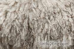 wool Urdu Meaning