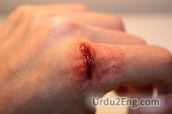wound Urdu Meaning