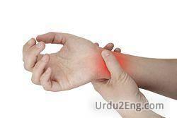 wrist Urdu Meaning