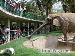 zoo Urdu Meaning